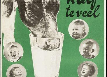 De campagne '1 kalf teveel, 8 kinderen geen melk' van 1942 doet de oproep aan boeren om minder kalveren - die emmers melk drinken - te houden.